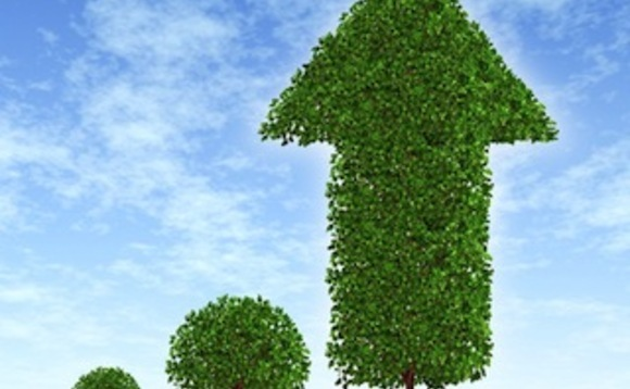 Now Pensions invests £65m in green bonds